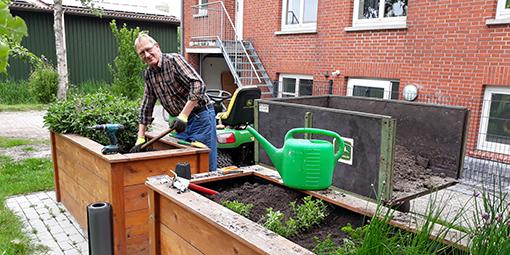 Dieter Cramer pflegt die Kräuter der Hochbeete