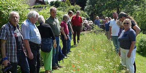 Seminar-Exkursion zu neu angelegten Blühstreifen