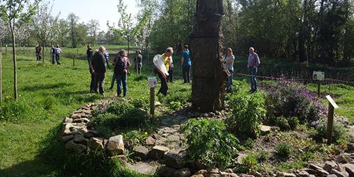 Seminar in der Natur