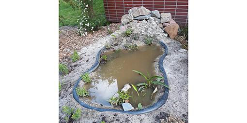 Neu angelegte Wasserstelle des EBZ
